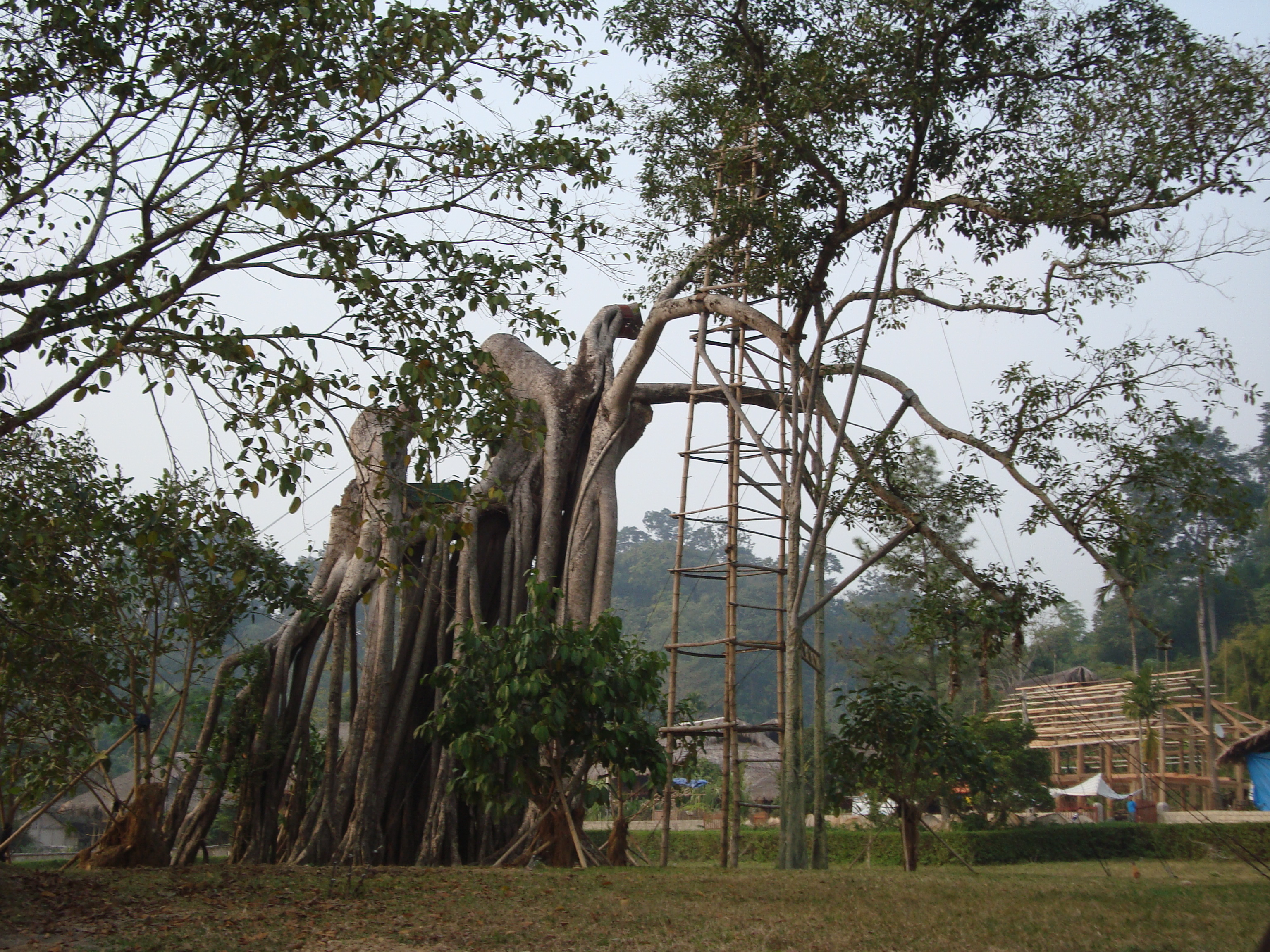 Tour Hà Nội- Tuyên Quang- Tân Trào- Hồ Ba Bể- Thác Bản Giốc- Pắc Pó- Bắc Ninh