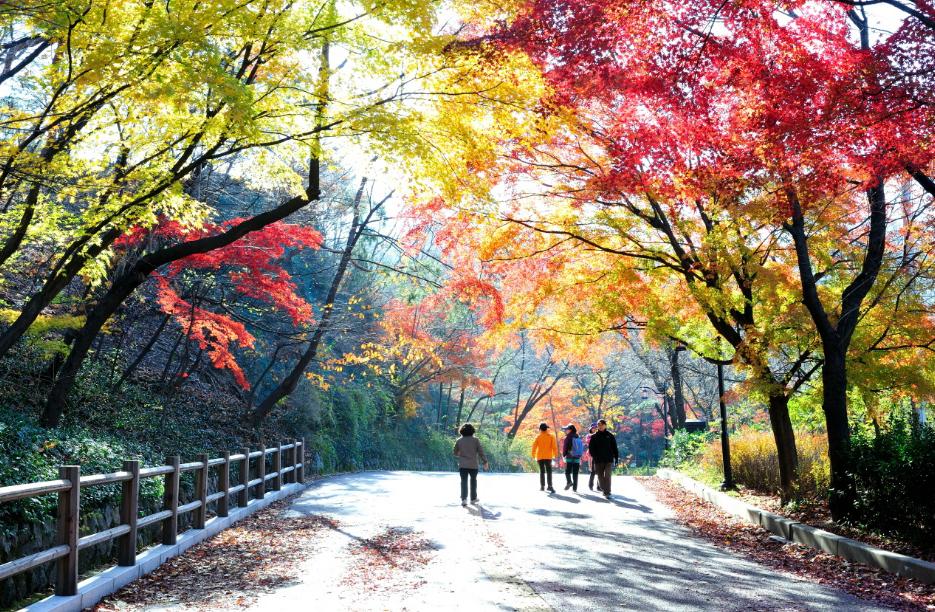 Tour Hà Nội- Seoul- Everland