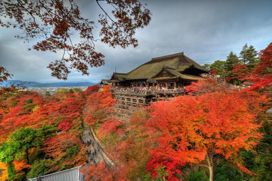 Tour Tp HCM- Tokyo – Osaka - Kyoto
