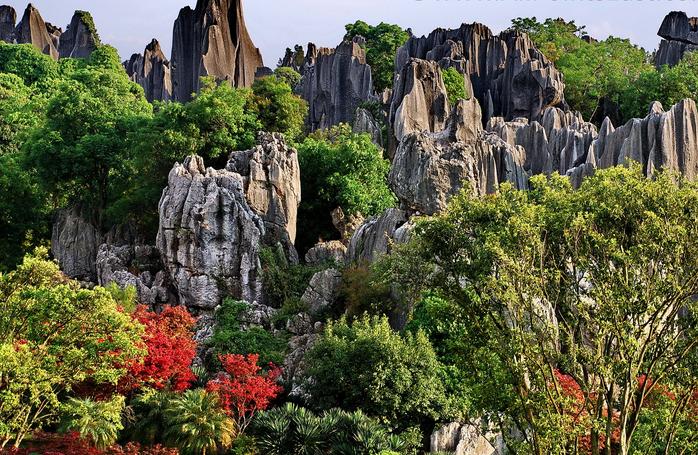 Tour Hà Nội- Côn Minh- Rừng Đá Thạch Lâm- Động A Lư