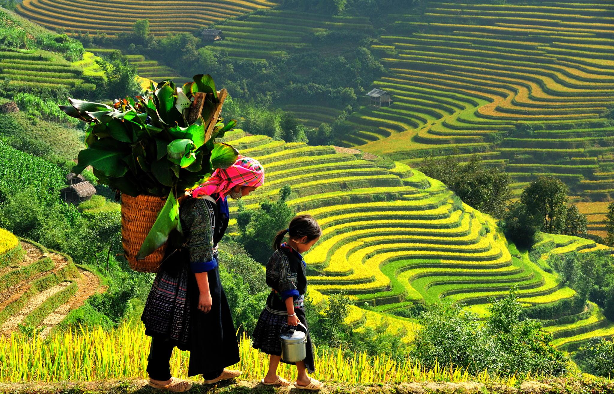 Tour Hà Nội- Sapa- Hà Nội